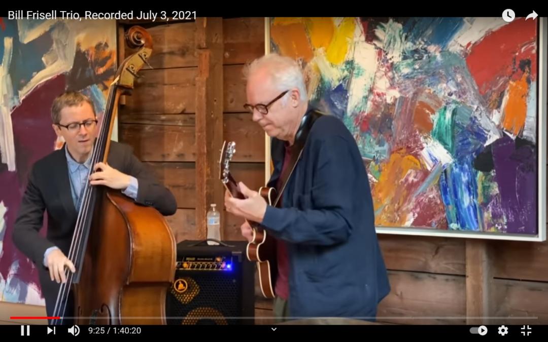 """Das """"Bill Frisell Trio"""" live am 03.07.2021"""
