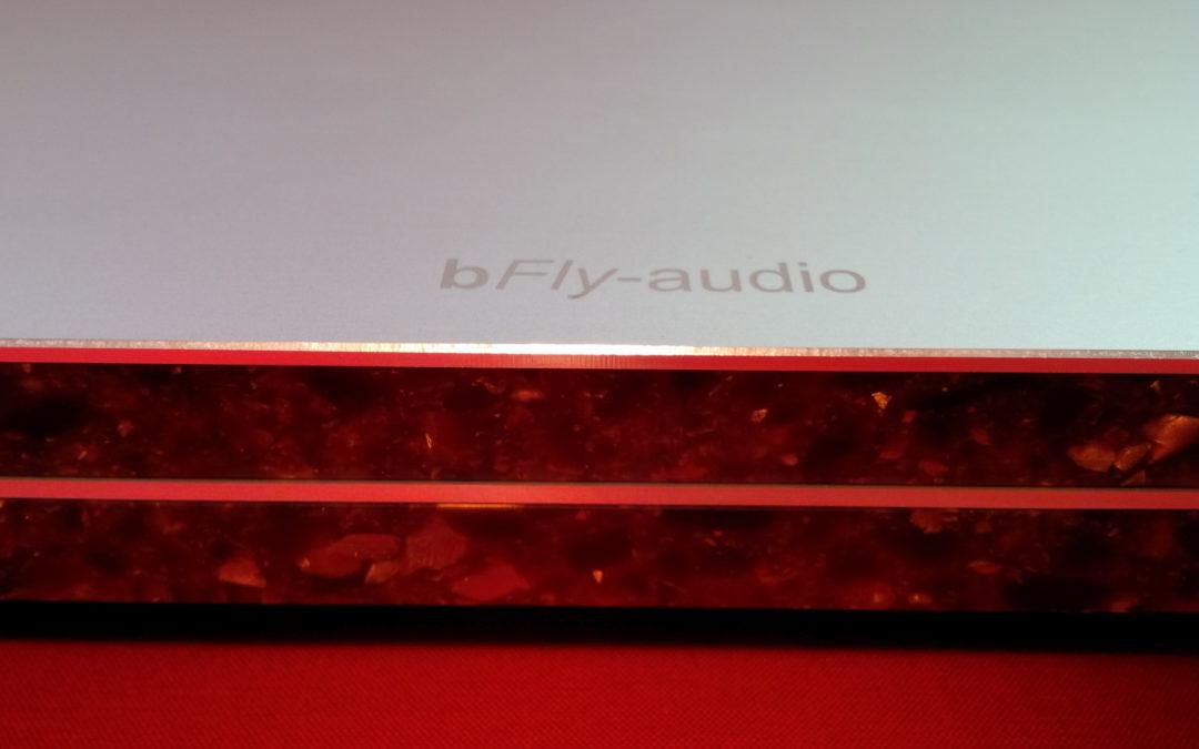 StoneLine  – die Entkopplung der Referenzklasse von bfly-audio